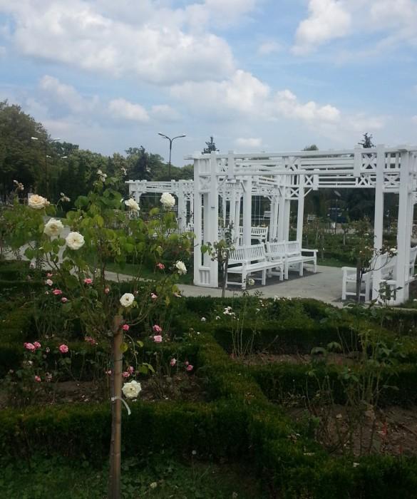 Parcul Rozelor, Tmişoara