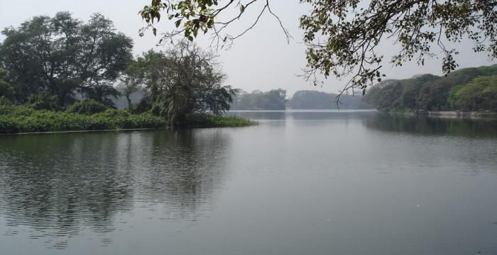 lacurile Dakuria