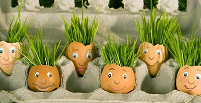 ghiveci din coji de ou